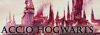 Accio Hogwarts 100x35-30475dc